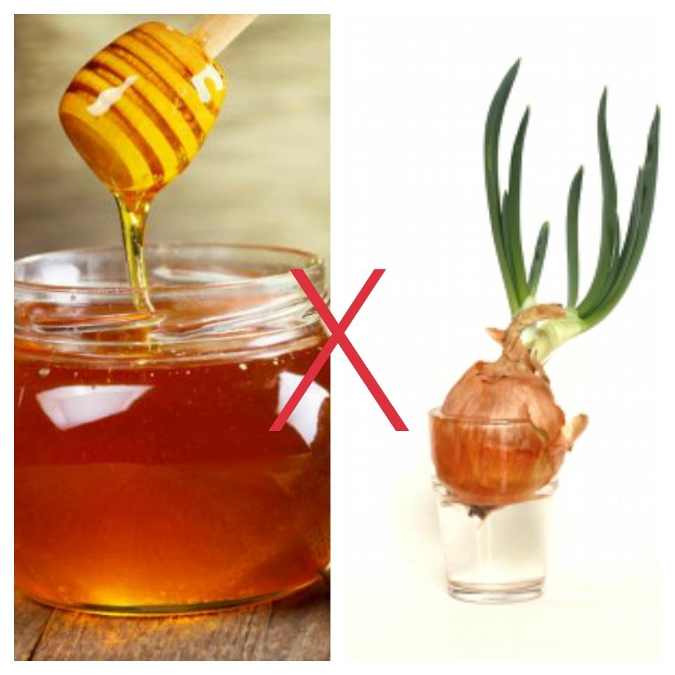 mật ong kỵ hành tây