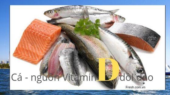 các loại cá béo - nguồn cung cấp vitamin D dồi dào