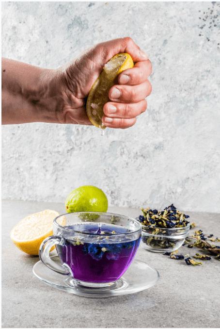 trà đậu biếc fresh thêm lát chanh uống tuyệt ngon